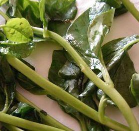 Vine spinach