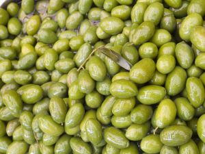 Green olives, ready for crushing