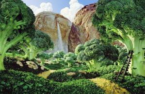 Broccoli and bread